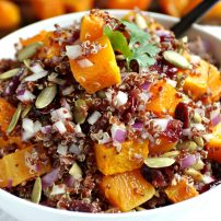 Butternut Squash, Quinoa and Cranberry salad with Balsamic Vinaigrette