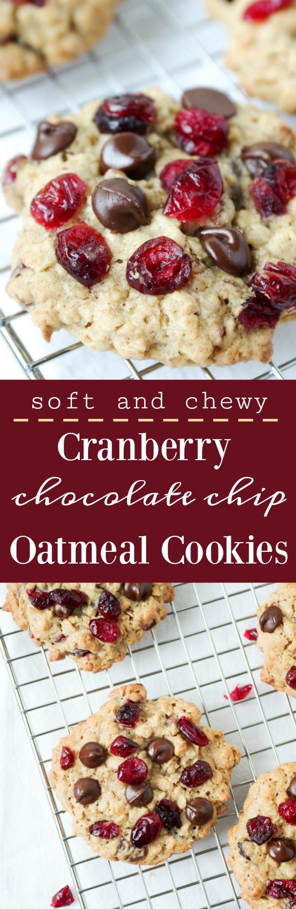 Soft and Chewy Cranberry Chocolate Chip Oatmeal Cookies via @theforkedspoon