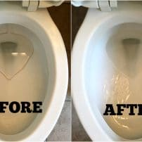 How To Remove Hard Water Stains From Toilets The Forked