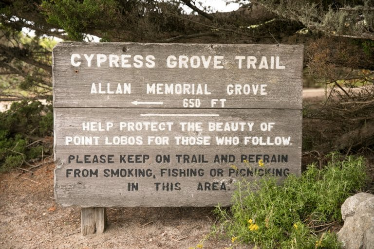 sign for crypress grove trail allan memorial grove
