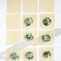 Mini Spinach and Cheese Ravioli with Homemade Marinara