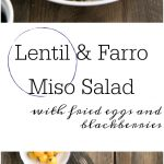 salad on plate composed of farro lentils miso egg blackberries