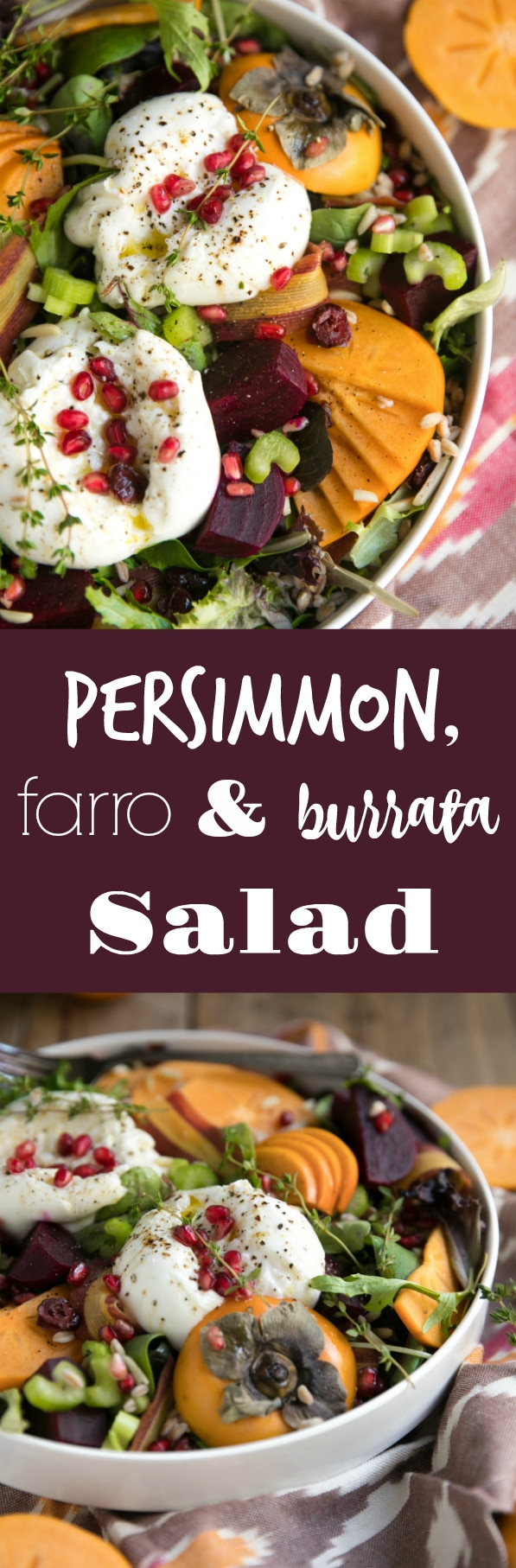 Persimmon, Farro, and Burrata Salad with Easy Balsamic Vinaigrette via @theforkedspoon #salad #farro #easyrecipe #burrata #autumn