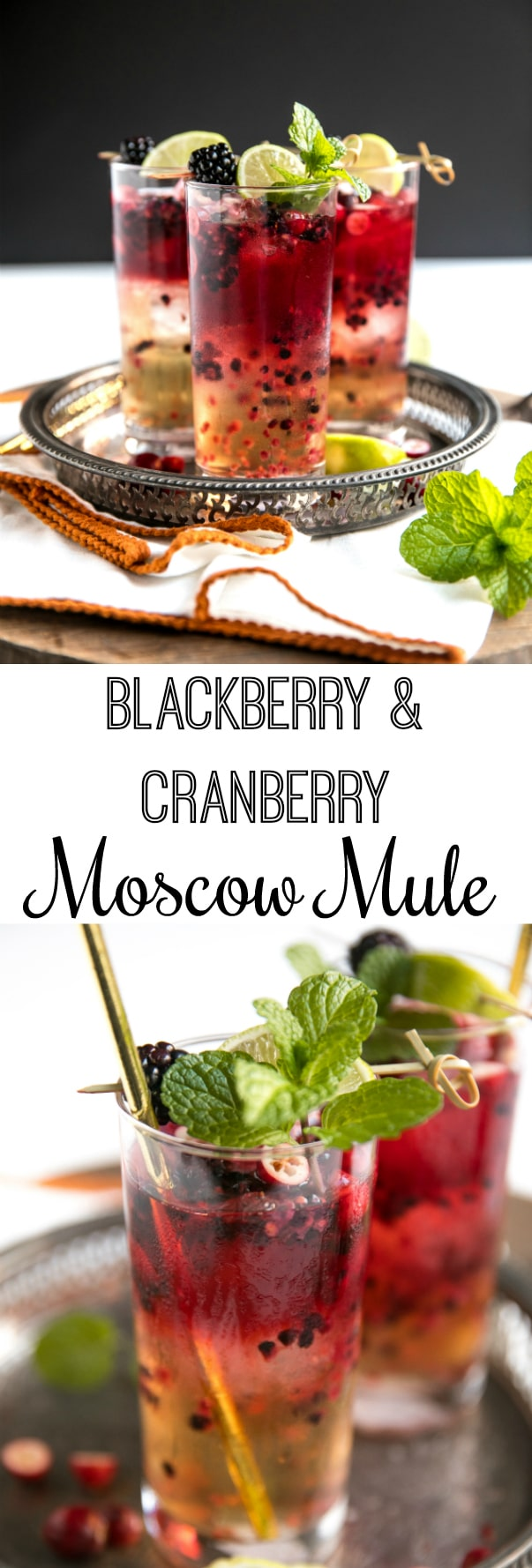 Blackberry Cranberry Moscow Mule #cocktail #moscowmule #vodka #recipe #theforkedspoon via @theforkedspoon