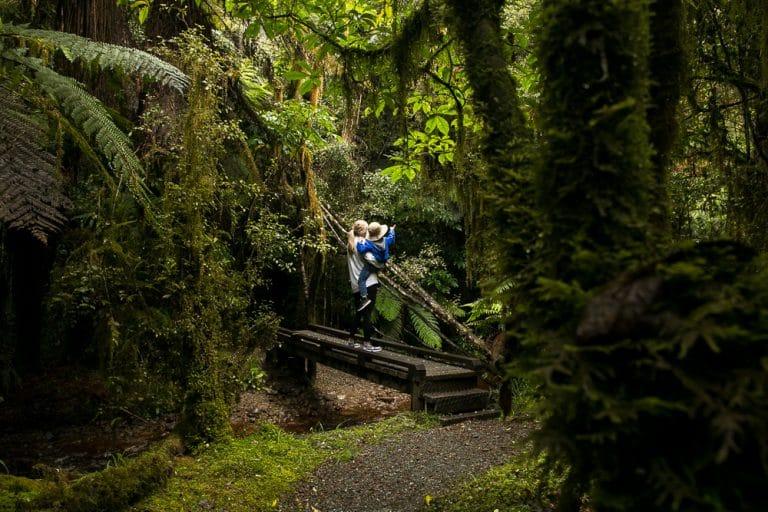 Woods Creek Hike, New Zealand
