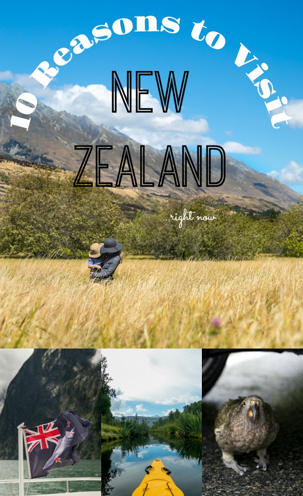 10 Reasons to Visit New Zealand Right Now via @theforkedspoon #newzealand #travel #travelnewzealand #milfordsound #franzjosephglacier #mtcook #newzealandtravelguide #mountains #ocean #queenstown #christchurch @tripadvisor | To read this post and more visit, https://theforkedspoon.com/