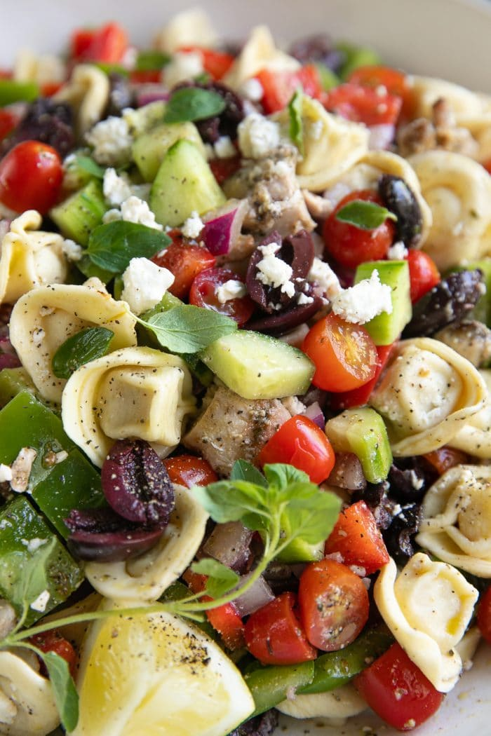 Tortellini salad filled with tortellini, cucumbers, cherry tomatoes, chicken, kalamata olives, bell pepper, and feta cheese.