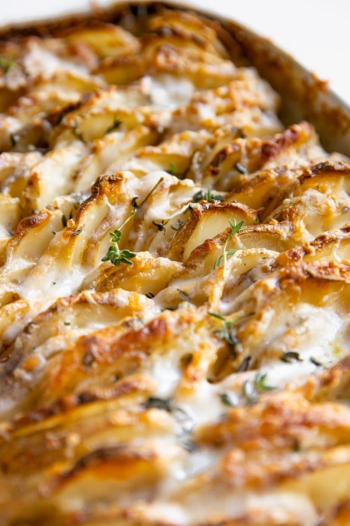 Close up image of a white casserole dish filled with thinly sliced potatoes baked in a homemade cream sauce and topped with cheese.
