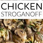 chicken stroganoff long pin