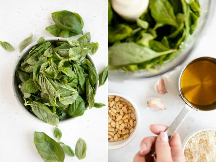 Ingredients needed to make homemade basil pesto including basil, olive oil, pinenuts, parmesan cheese, and garlic.