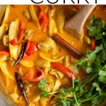 chicken curry short pin