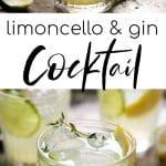 limoncello cocktail long pin
