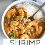 shrimp etouffee short pin