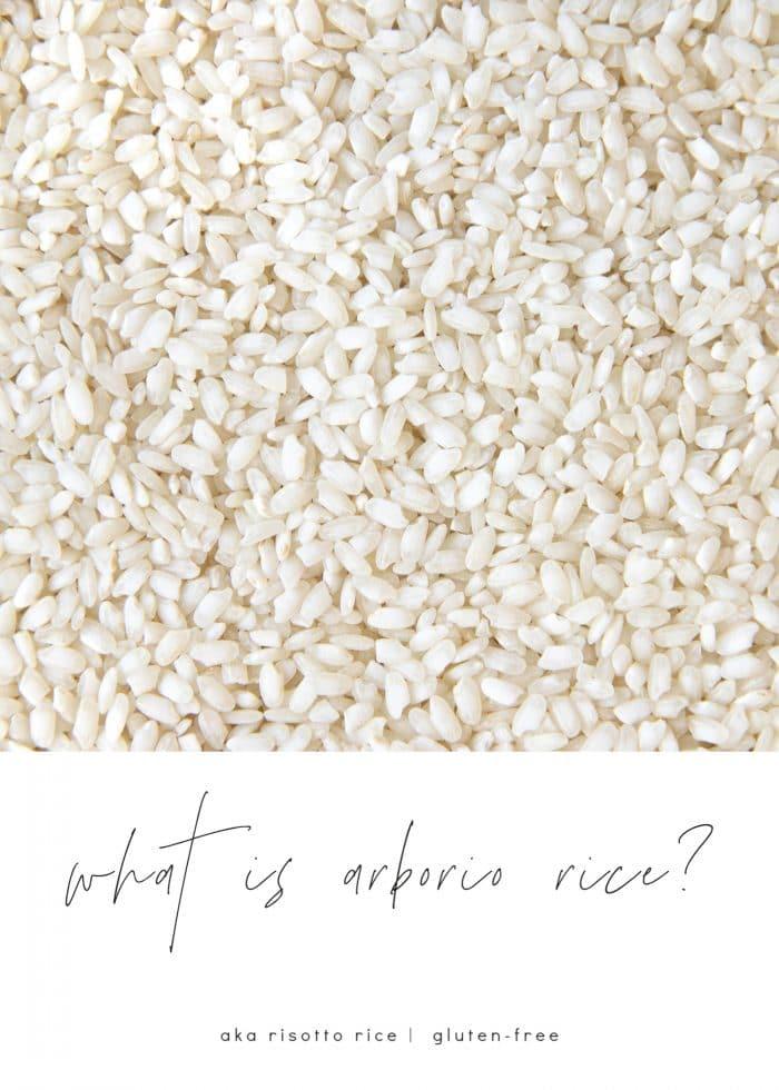 What is Arborio Rice?