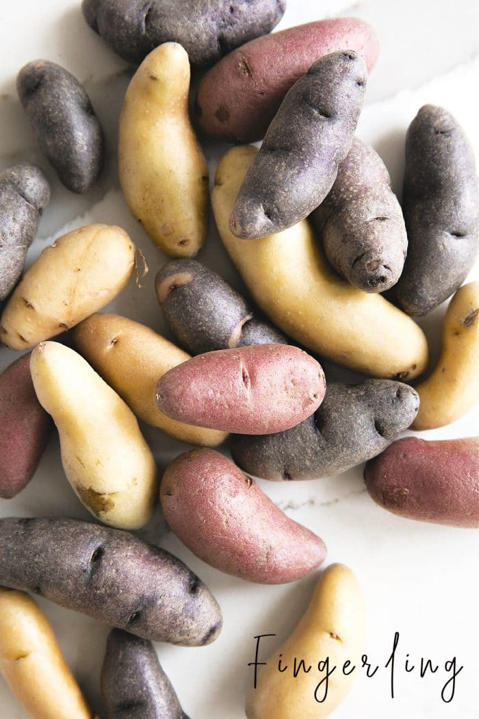 A bunch of muliti-colored fingerling potatoes