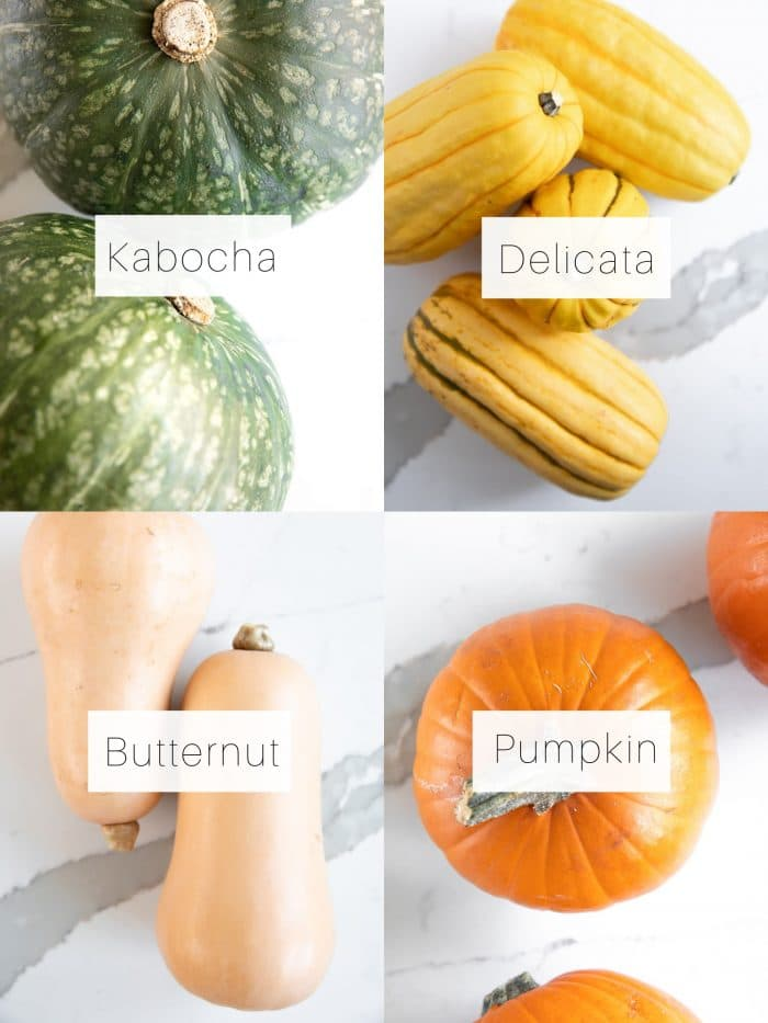 Collage of four different types of winter squash: pumpkin, kabocha, delicata, and butternut