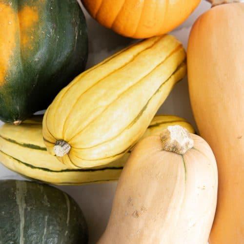 FIve types of winter squash: pumpkin, butternut, kabocha, delicata, and acorn
