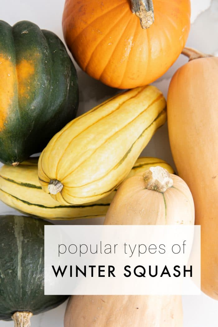 Sugar pumpkin, butternut squash ,acorn squash, delicata squash, and kabocha squash
