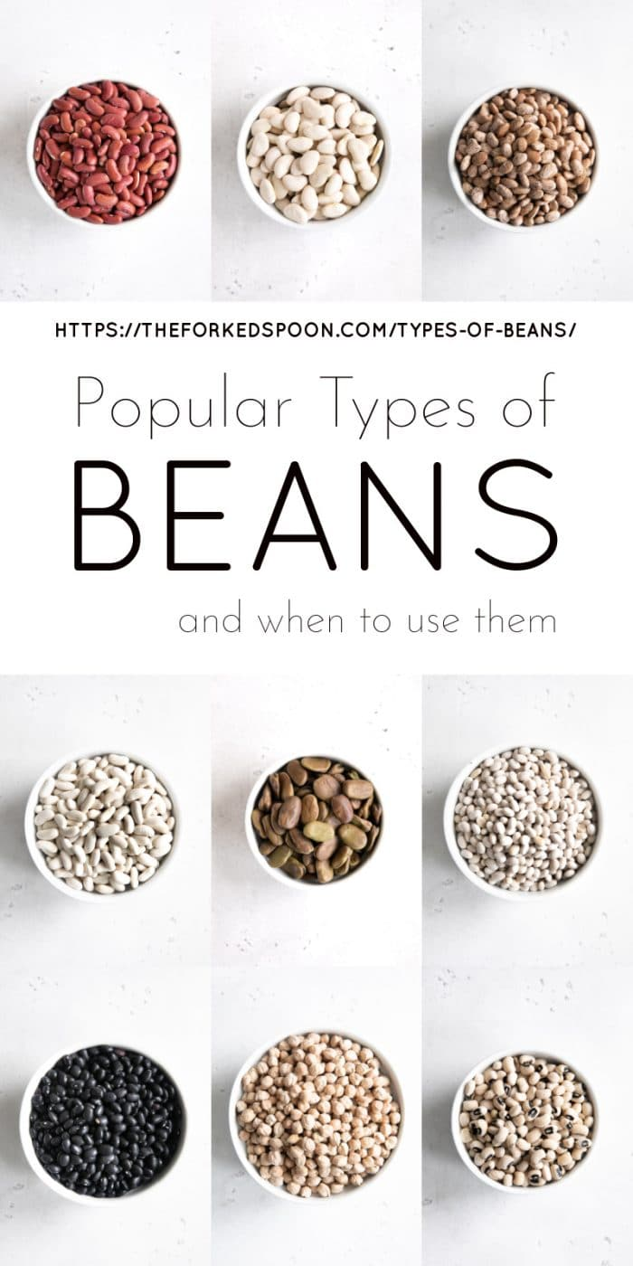 Types of beans Pinterest Pin Collage Image