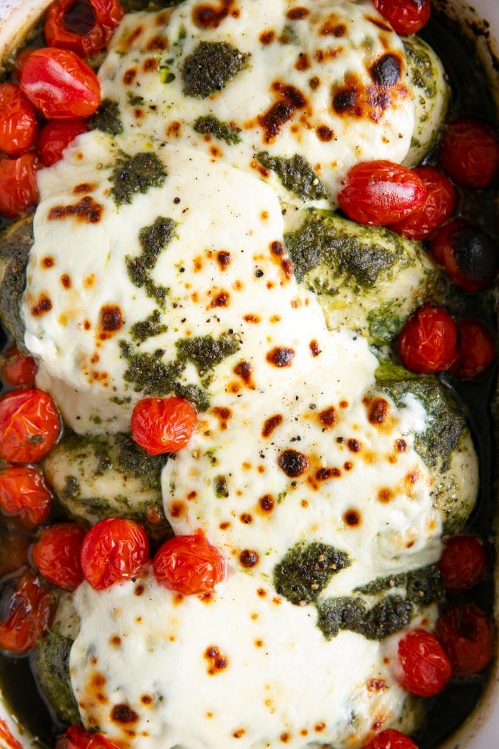 White casserole dish filled with four large oven-baked chicken breasts smothered in pesto sauce, fresh melted mozzarella cheese, and burst cherry tomatoes.