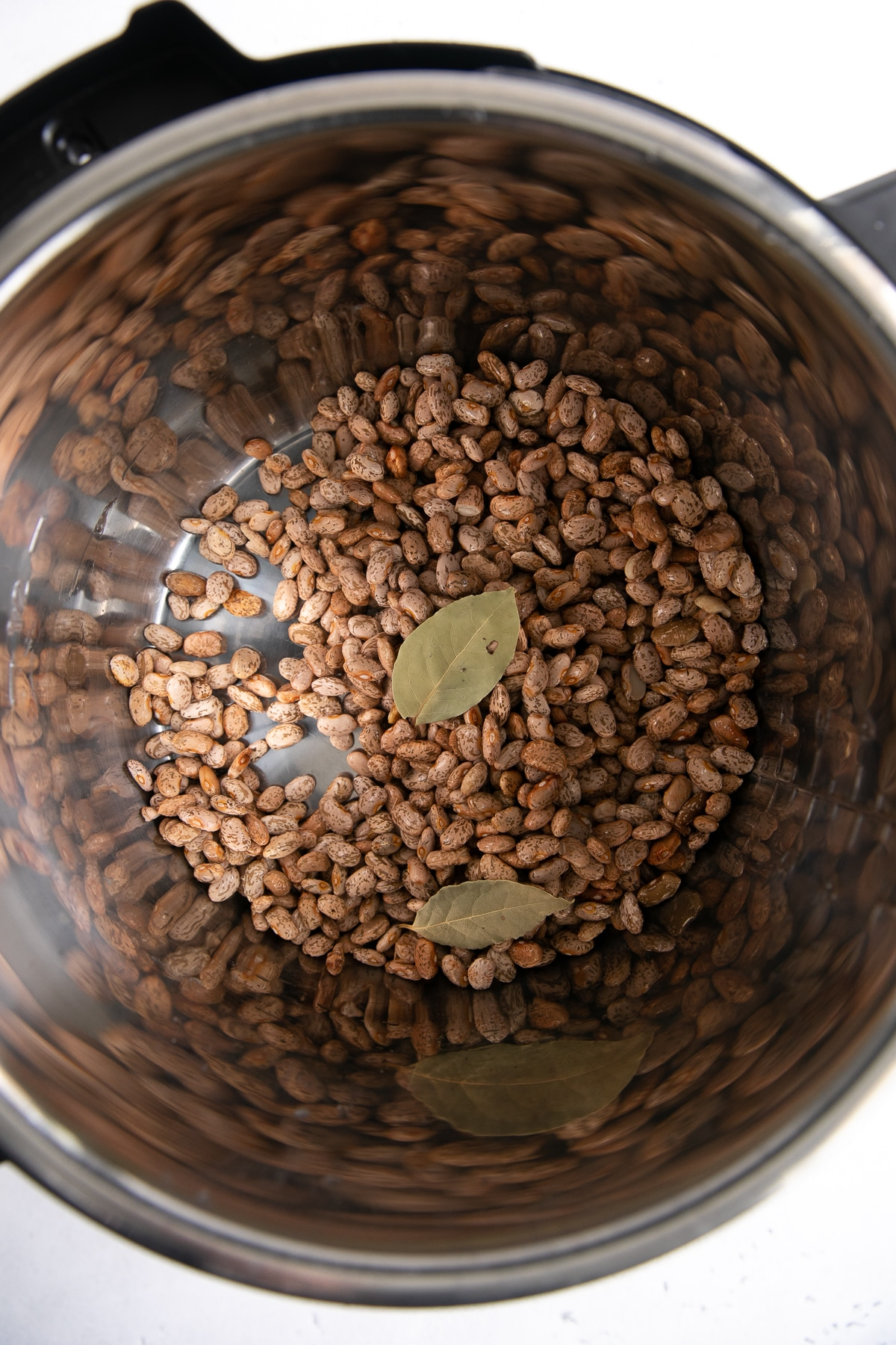 Dry pinto beans and two bay leaves in the pot of a large Instant Pot pressure cooker.
