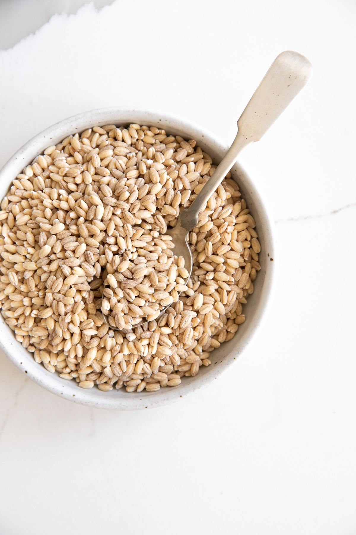 Overhead image of a small white bowl filled with pearl barley.